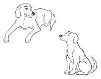 De overzichten van de labrador stock illustratie