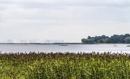 De overzichten van de stad op de horizon royalty-vrije stock afbeeldingen