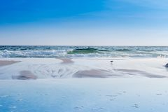De overziende mening van de kust in Destin, Florida royalty-vrije stock fotografie