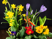 De Pâques toujours durée Image stock