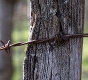 De púas atada con alambre en los posts II fotografía de archivo libre de regalías