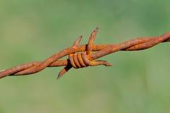 De púas oxidado Imagenes de archivo