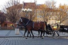 De paard getrokken reis van de vervoerrit Royalty-vrije Stock Foto's