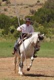 De paarden Zomer Fest van Las Golondrinas van de Demonstratie. royalty-vrije stock afbeelding