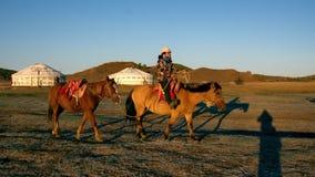De paardhuur stock foto