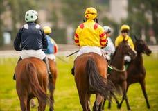 De paardruiters op het ras volgen Stock Foto's