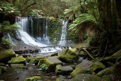 De paardschoen valt Tasmanige stock fotografie