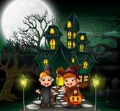 De paarheks voor hounted huis met volle maanachtergrond royalty-vrije illustratie