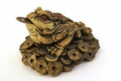De Pad van het Geld van Shui van Feng Royalty-vrije Stock Afbeeldingen