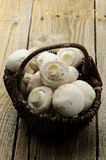 De paddestoel van de champignon Stock Foto's