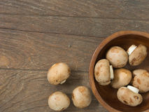 De paddestoel van de champignon Royalty-vrije Stock Foto