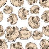 De paddestoel van de champignon Royalty-vrije Stock Afbeeldingen