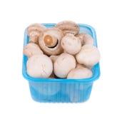 De paddestoelen van de champignon Royalty-vrije Stock Afbeeldingen