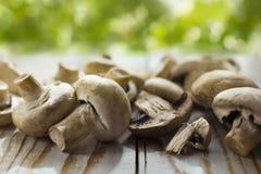 De paddestoelen van de champignon Stock Foto's