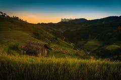 De padievelden op terrasvormig met houten paviljoen bij zonsondergang in Mu kunnen stock fotografie