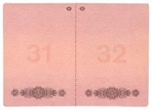 De pagina's van het paspoort Stock Afbeeldingen