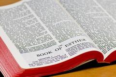 De Pagina van de bijbel - Esther stock fotografie