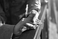 De pair, amour, manteau, doigts, photo noire et blanche Image stock