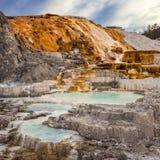 De paletlente in Yellowstone Stock Foto's
