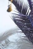 De palm elegant abstract blauw van de messingsklok Royalty-vrije Stock Afbeeldingen