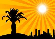 De palm en de gebouwen van het silhouet Royalty-vrije Stock Foto