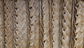 De palm met stro bedekt achtergrond Royalty-vrije Stock Afbeelding