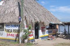 De palm met stro bedekte Mexicaans restaurant Stock Foto