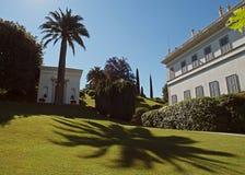 De Palm van de schaduw Royalty-vrije Stock Afbeelding