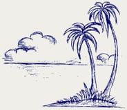 De palm van het eiland Stock Afbeelding