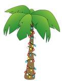 De Palm van Kerstmis Royalty-vrije Stock Fotografie