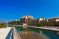 de palma Kathedrale Mallorca Zdjęcie Stock