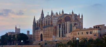 de palma Mallorca Zdjęcie Stock