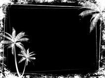 De palmachtergrond van Grunge Stock Foto's
