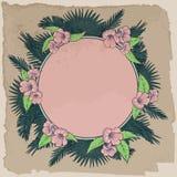 De palmbladen en de bloemen omcirkelen uitstekend kader Stock Fotografie