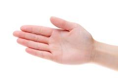 De palmclose-up van de vrouwenhand Royalty-vrije Stock Afbeelding