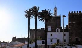 De palmen en het kasteel royalty-vrije stock afbeelding
