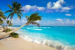 De palmen Mexico van het Playa del Carmenstrand stock foto's