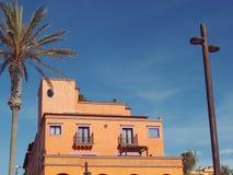 De Palmen van de Canarische Eilandenspanje van Tenerife met de bouw Stock Foto's