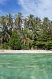 De palmen van de kokosnoot en turkooise wateren Royalty-vrije Stock Foto