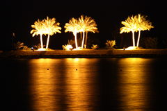 De palmen van Egypte Royalty-vrije Stock Afbeeldingen