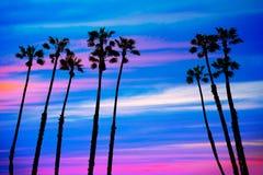 De palmenzonsondergang van Californië met kleurrijke hemel royalty-vrije stock foto's