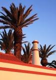 De palmschoorsteen van Armacao Stock Foto's