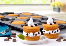 De Pan van de muffin Stock Afbeeldingen