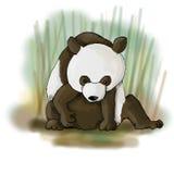 De panda draagt illustratie Stock Fotografie