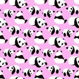 De panda draagt vectorachtergrond Stock Foto