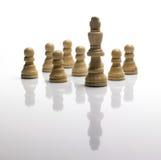 De panden en de koning die van het schaak van de menigte duidelijk uitkomen Royalty-vrije Stock Afbeelding