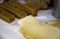 De panelen van de bijenhoning stock foto's