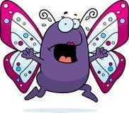 De Paniek van de vlinder Stock Foto