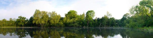 De panoramische Vijver van het Meer met Bomen en Bezinning Royalty-vrije Stock Foto's