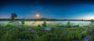 De panoramische weide van de landschapsnacht royalty-vrije stock foto